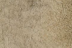 Old stucco wall Stock Images
