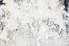 Old stucco wall texture of gray color Stock Image