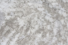 Old stucco wall texture of gray color Stock Images