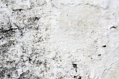 Old stucco wall texture of grey color Stock Images