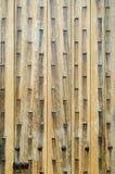 Archtecture texture - wooden door detail. Old studded fortified wooden door detail Stock Photos