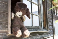 Old stuffed bear Stock Photography