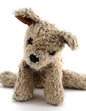 Old Stuffed Dog Royalty Free Stock Photo
