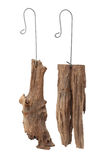 Old stump with hanging hook Stock Photo