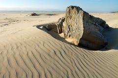 Old stump and rippled sand, Oregon beach Stock Photo