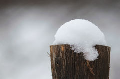 Old stump snow covered Royalty Free Stock Photo