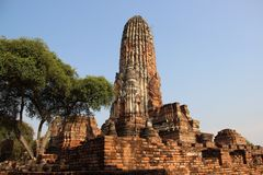 Buddhist Temple  And Old Stupas With Jujube Tree. Ruins. temple with old pagodas and bricks walls Buddhist historical park in Phrm Ram temple. summertime in stock photography
