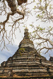 Old Stupa in Mrauk U, Myanmar Royalty Free Stock Images