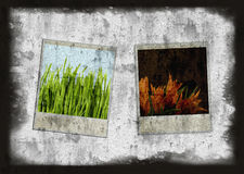 Old Style Camera Frames Royalty Free Stock Photos