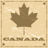 Old style Canada maple leaf vector illustration