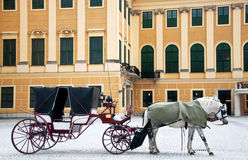 Old style coach with horses. Old traditional carriage with two paint white and gray horses standing and waiting for passengers near Belvedere palace in Vienna Stock Photography