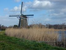 Windmill next to the Rotte royalty free stock photos