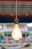 Old style light bulbs Stock Photography