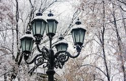 Old style outdoor lantern in a park Royalty Free Stock Image