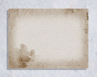 Old style paper Royalty Free Stock Photo