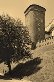 Old Style Photo Of Royal Wawel Castle, Cracow Royalty Free Stock Photography