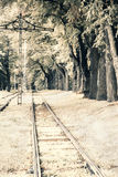 Old style photo of railway in forest Stock Image