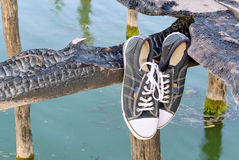 Old style sneakers C Stock Photography