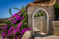 Old style stone gate at sunny summer day. Old style stone gate decorated by flowers at summer sun. Stari Bar touristic center, Montenegro Royalty Free Stock Images