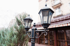 Old style street lamp on a background of trees Royalty Free Stock Images