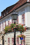 Old style street lamp with flowers Royalty Free Stock Images