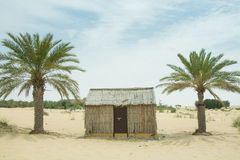 Old style village arabic small house in the desert between palm trees Stock Photography