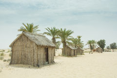 Old style village arabic small wooden houses in the desert between palm trees Royalty Free Stock Images