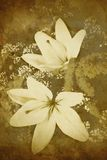 Old-styled flowers background. Old styled vintage flowers background Royalty Free Stock Image