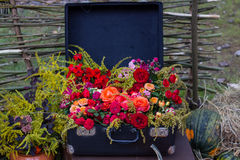 Old suitcase with flowers Stock Image