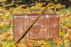 Old suitcase with walking stick on autumn leaves Royalty Free Stock Image