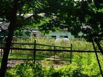 Old summer backyard. Old backyard with paling at summer farm Royalty Free Stock Photo