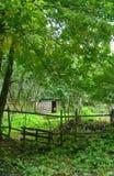 Old summer backyard. Old backyard with paling at summer farm Royalty Free Stock Image
