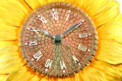 Old sunflower clock. Stock Photography