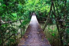 Old suspension bridge across the river. Suspension bridge across the river in the forest Royalty Free Stock Photography
