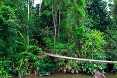 Old suspension bridge across the river. Suspension bridge across the river in the forest Royalty Free Stock Photos