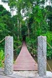 Old suspension bridge across the river. Suspension bridge across the river in the forest Stock Photos