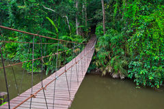 Old suspension bridge across the river. Suspension bridge across the river in the forest Royalty Free Stock Photo
