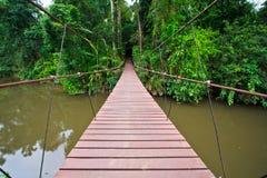 Old suspension bridge across the river. Suspension bridge across the river in the forest Stock Image
