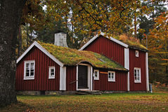 Old Swedish house. Old traditional Swedish house with grass on top Stock Photos