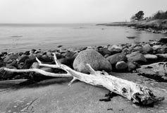 Old Swedish sea coast Stock Photography