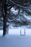 Old swing on fir tree in snow