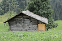 Old Swiss cabin, hut, in the moutains. Old Swiss mountain cabin, hut, in meadow with trees Stock Images