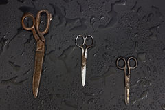 Old tailors scissors Royalty Free Stock Images