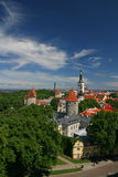 Old Tallin sight. Old town, capital of Estonia Stock Photography