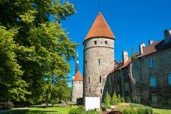 Old Tallinn. Estonia Royalty Free Stock Photography