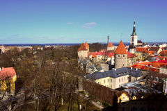 Old Tallinn and its old red roofs, Estonia Royalty Free Stock Photography