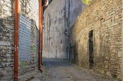 Old Tallinn Stock Photography