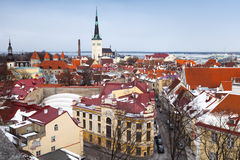 Old Tallinn panorama Royalty Free Stock Photography