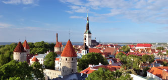Old Tallinn in summer. View of Oleviste church and towers Royalty Free Stock Photos