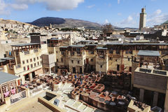 Old tannery of fez morroco Stock Photography